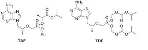 Cấu trúc của tenofovir disoproxil và tenofovir alafenamid
