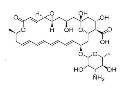 Cấu trúc của Natamycin 5% trong thuốc Natacyn 5%