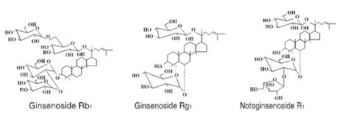 Cấu trúc các hợp chất chính của Panax notoginseng saponins