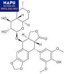 Cấu trúc Etoposid