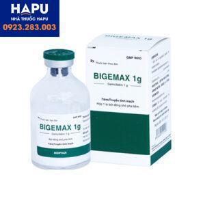 Thuốc Bigemax 1g thông tin thuốc