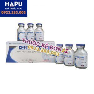 Thuốc Ceftibiotic 2000 công dụng cách dùng